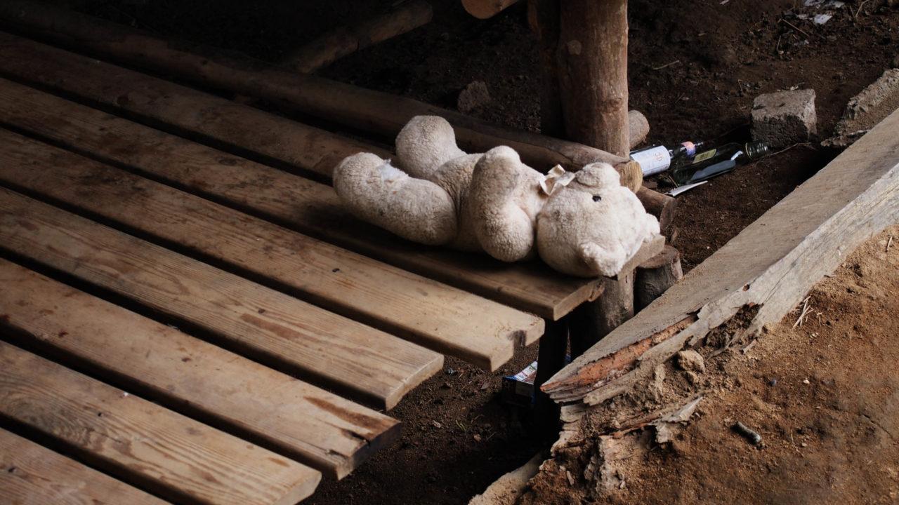 sad teddy bear on wooden plank